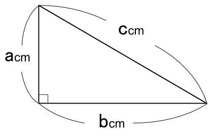 中学数学・高校受験chu-su- 三平方の定理 図1